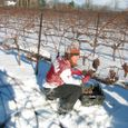 040117_115_icewine_party